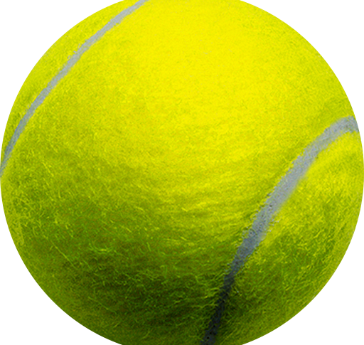 Tennis in carrozzina morotti ricci pedrini